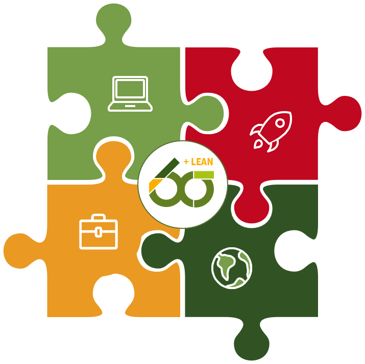 Six Sigma Puzzle - Leistungsumfang